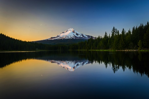 Il Pinot Noir e il sorprendente habitat dell'Oregon