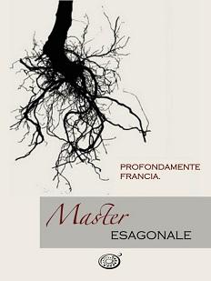 Master Esagonale