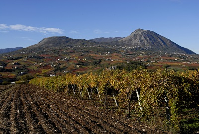 Sannio colline