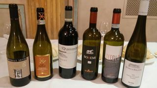 I vini degustati